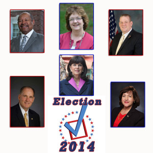 Election2014State-Rep