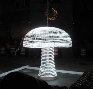 MushroomDrop